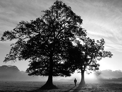 Alexa Bailey - Award Winning Environmental Photographer